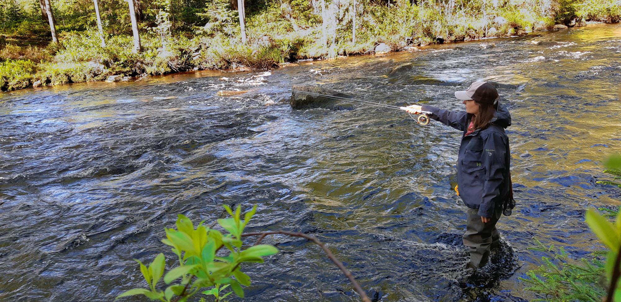Myllykoski kalastus suomessa