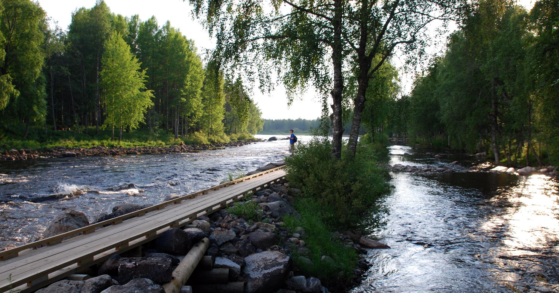 Pajakkakoski Suomen kosket Kuhmo_